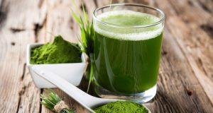 Contine de zece ori mai multa clorofila decat legumele cu frunze verzi!